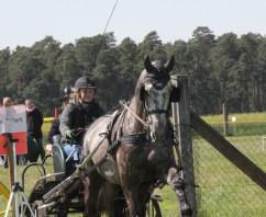 Marcella Meinecke in Bülstringen wieder erfolgreich unterwegs